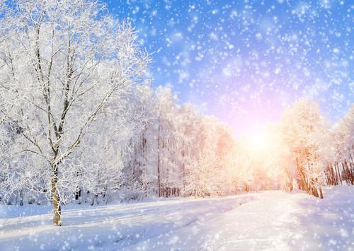 День Карачуна - зимнее солнцестояние у славян (2017 и 2018 год):обряды и традиции. Что значит Карачун?