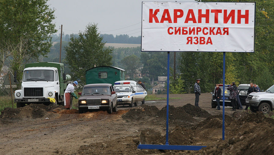 На Ямале эвакуируют людей в связи с распространением сибирской язвы