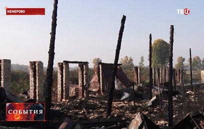 В кемеровском приюте для животных заживо сгорели 120 собак