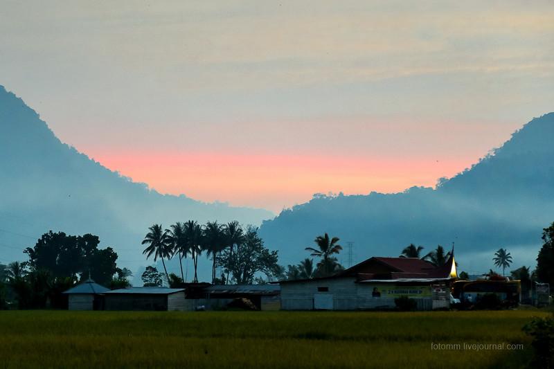 Индонезия. Джунгли и деревенская жизнь Суматры путешествия, факты, фото