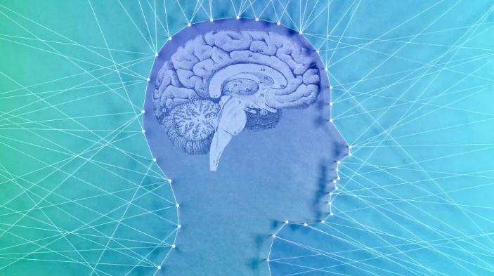 Почему наш мозг цепляется за…