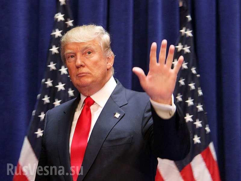 Победа Трампа: что будет с либеральным зоопарком в России? — мнение
