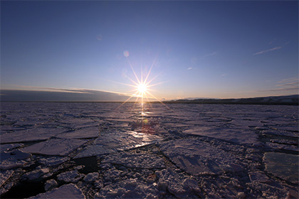 Эксперты отметили роль России в создании крупнейшего в мире морского заповедника