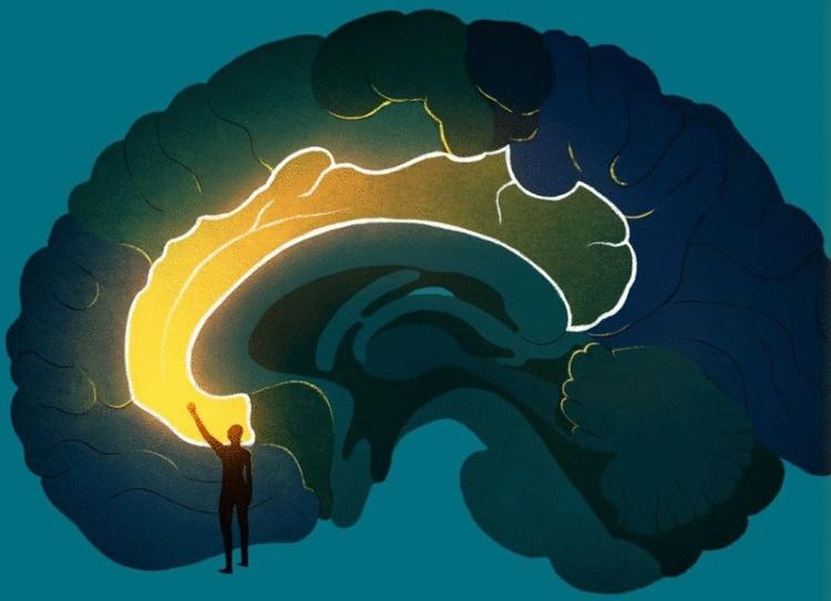 Первая помощь при стрессе: Советы кинезиолога