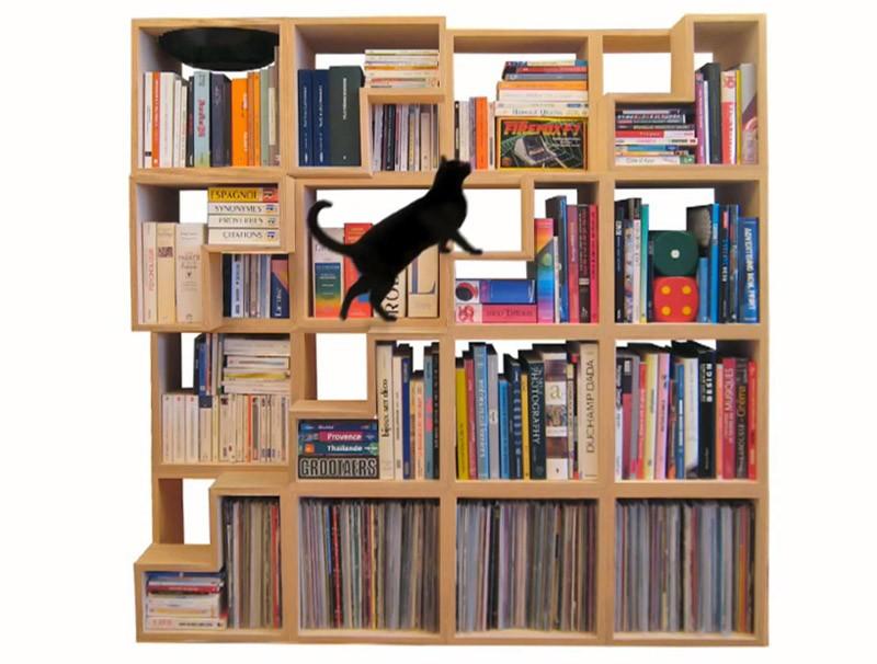 Библиотека для кошек - идеи для дома.