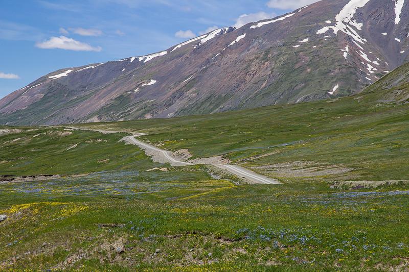 Дорога регионального значения - Кош-Агач - Джазатор алтай, путешествия, россия, укок, фото