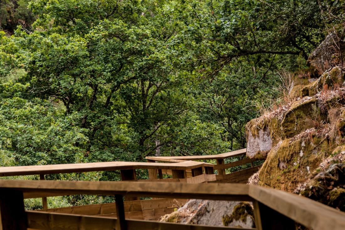 Деревянные тропы в Португалии