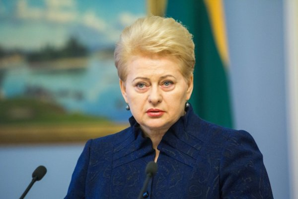 """Грибаускайте предрекает Украине """"долгий путь"""" в ЕС"""