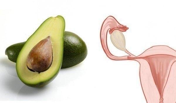 Продукты полезны для тех частей тела, на которые похожи