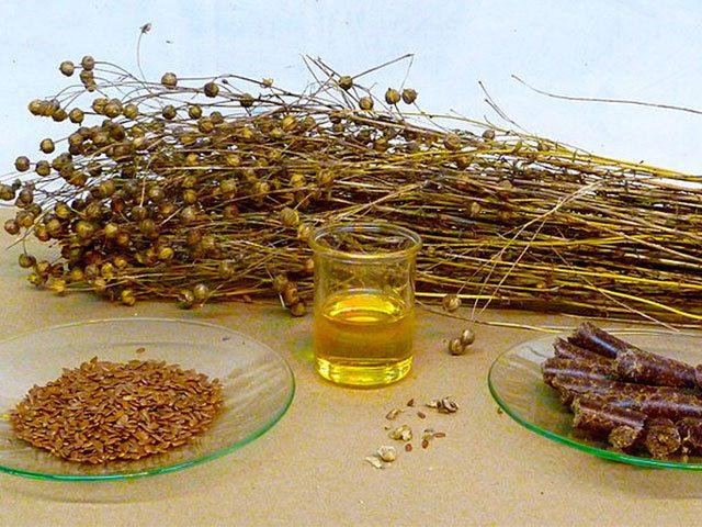 Старинное русское лекарство - льняное масло