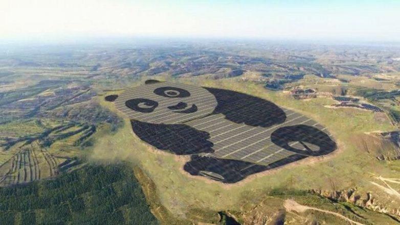 Культ бамбукового медведя: в Китае заработает электростанция-панда!