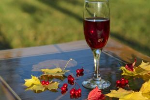 Согревающие и бодрящие. Лучшие напитки осени с лесными ягодами