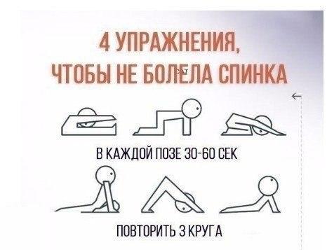 4 упражнения против болей в спине