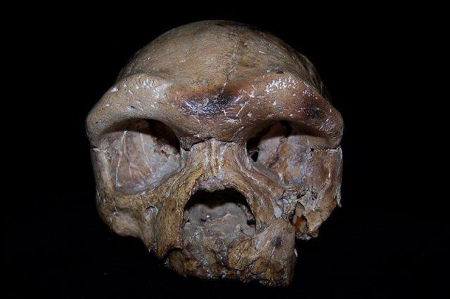 Антропологи усомнились в африканском происхождении людей.