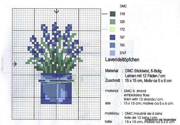 lavanda (342) (700x486, 114Kb)