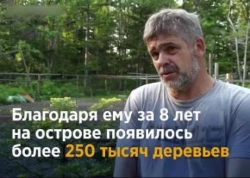 Житель Сахалина за свои деньги посадил 250 тысяч деревьев! Но местные власти отобрали его участок, где он выращивал саженцы