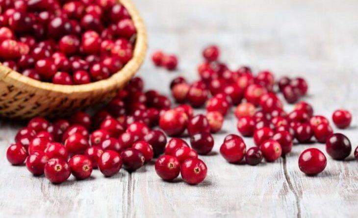 Маленькая ягода огромной силы: 8 полезных качеств клюквы