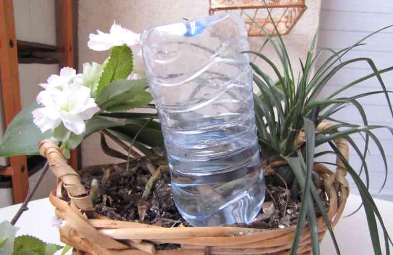 Больше не нужно просить соседей поливать ваши цветы. Цветы поливают себя сами