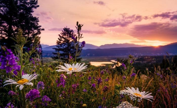 Как же красив наш мир