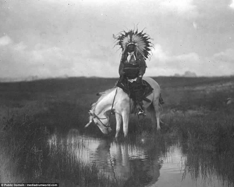 Шайенны — индейцы, воевавшие с армией США: исторические фото аборигены, индейцы, исторические кадры, история, племена, редкие фото, сша, фото