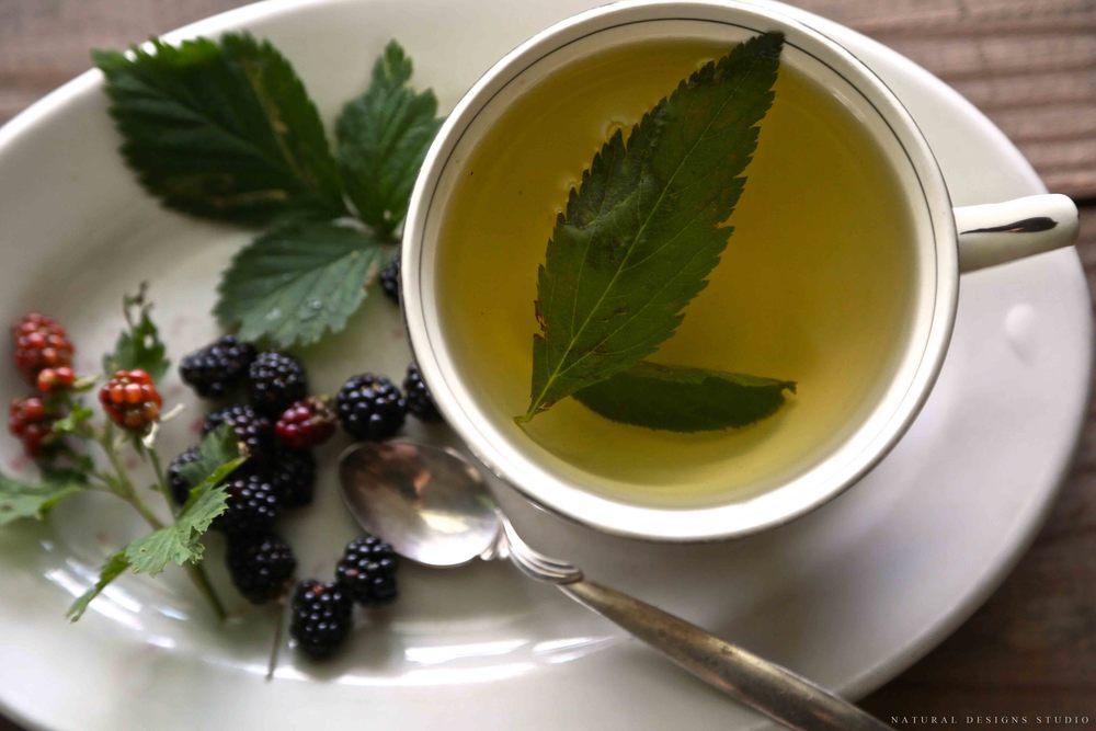 9 великих травяных чаев которые действительно исцеляют
