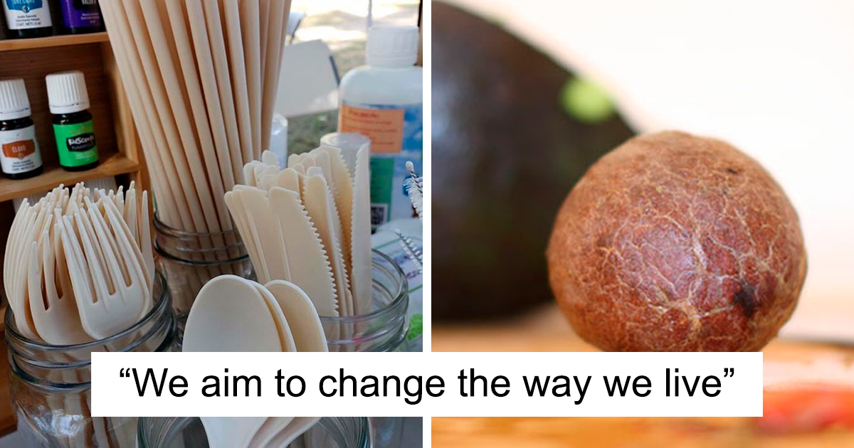 Mexican Company Finds A Genius Way To Use Avocado Seeds To Create Biodegradable Single-Use Cutlery
