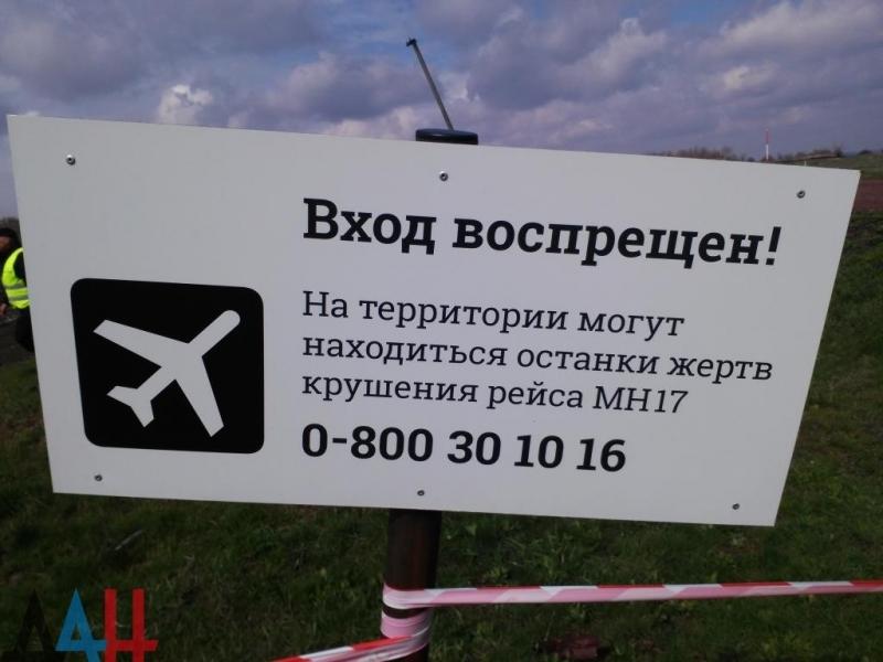 Омбудсмен ДНР призвала ООН помочь в передаче следствию останков, найденных на месте крушения «Боинга»