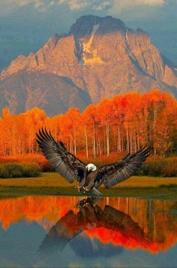 Природа - ты божественна!