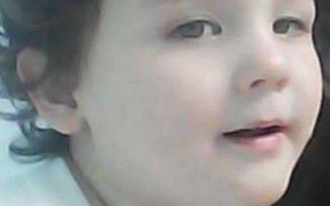 Когда в лесу пропал маленький мальчик, никто не обратил внимания, что исчезла и собака