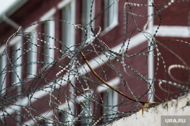 В России предложили ввести смертную казнь для иностранцев за вмешательство в выборы