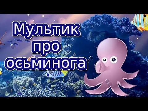 Мультик про осьминога | Мультики для детей