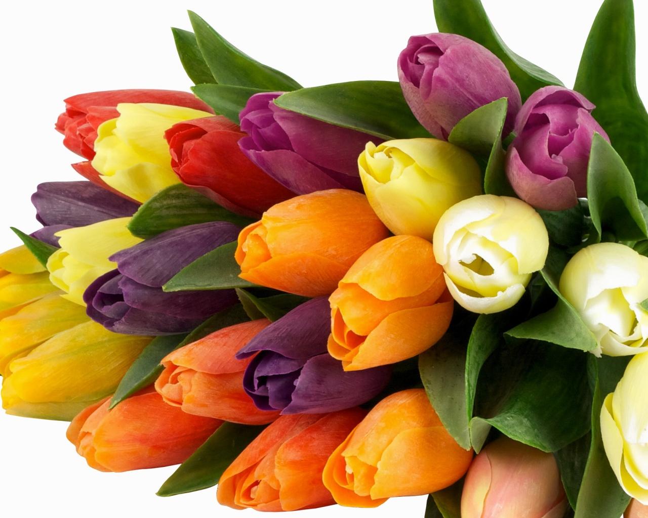 1280x1024 Обои тюльпаны, букет, яркий, весна