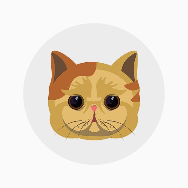 На аватарке животное или мультяшный персонаж