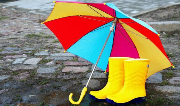 Волгоград, погода в начале недели: «мокрый» вердикт озвучили синоптики
