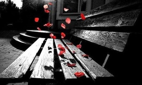 Любовь. Не дай погибнуть чувствам