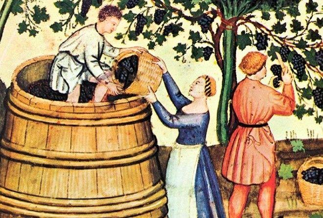 Какое вино считается самым древним?