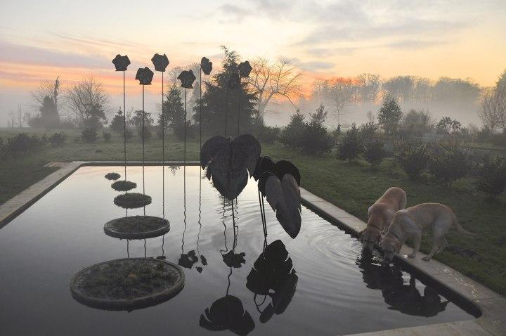 Победитель конкурса – «Ботанический парк Верхней Бретани, Бретань», Алан Жуно Фотоконкурс Королевского садоводческого общества 2014 года