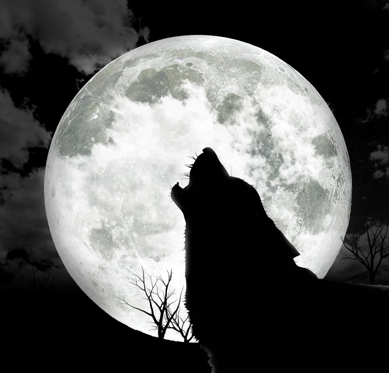 Призрак Черного пса является перед смертью