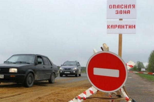 Россия временно закрыла ввоз свинины изЮжной Осетии из-за АЧС