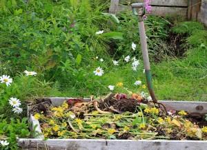 Всё о компосте на огород!
