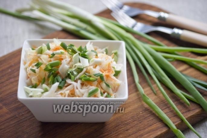Капуста суточная рецепт с пошагово