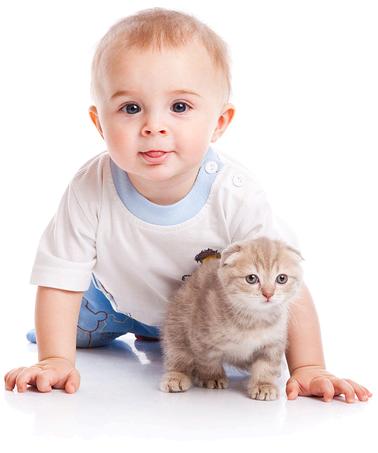 Ученые доказали, что аутизм можно излечить с помощью домашнего животного