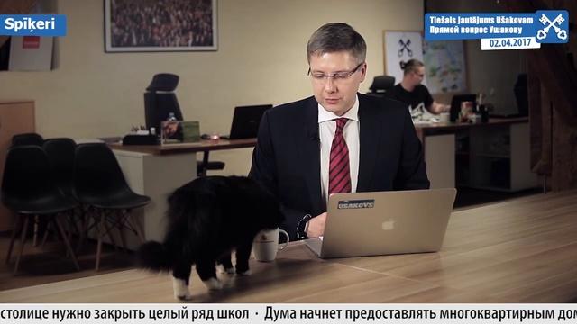 Обращение мэра к гражданам прервал кот