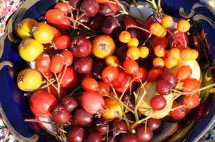 Осенние рецепты. Готовим из облепихи, брусники и кизила