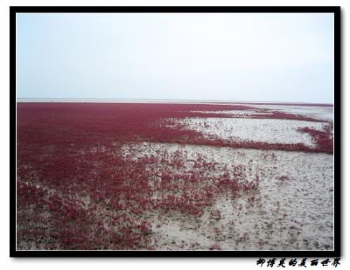 Красная песчаная отмель в Ки…