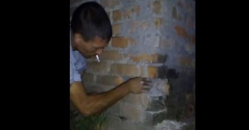 Они услышали странные звуки внутри стены. Невероятно, что они нашли внутри!