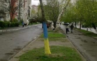 Украинские ученые: Береза и подорожник — доказательство экологической агрессии России
