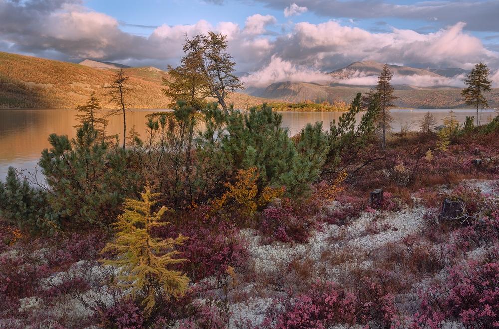 Осенняя Колыма, туманы Приморья, озёра и горы в пейзажных фотографиях Тони Андреевой