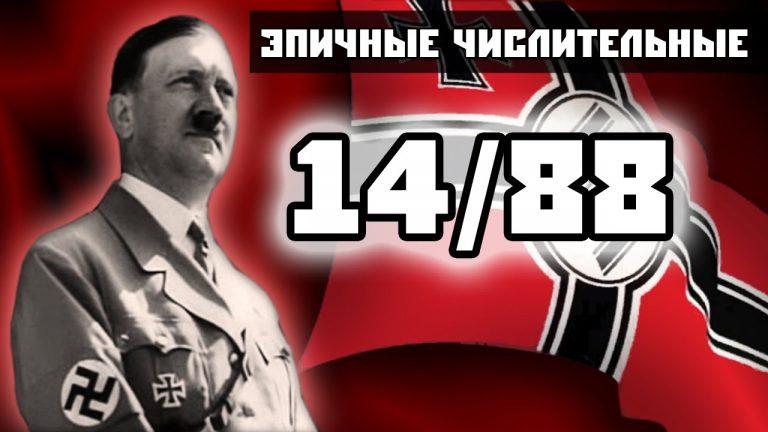 Верховная Рада признала число «14» сакральным для украинских неонацистов