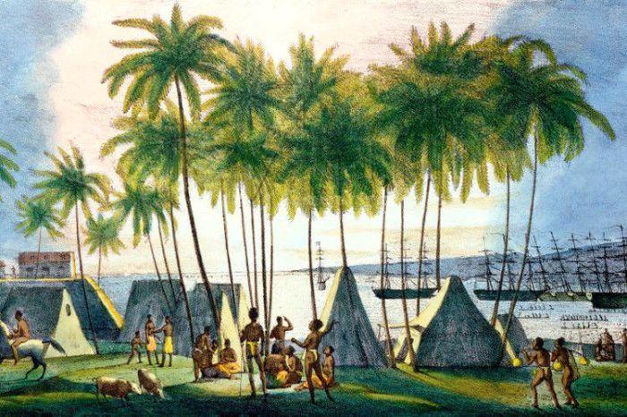 Остров Каукаи на Гавайях в 1815 году был российской колонией.   Фото: lemur59.ru.